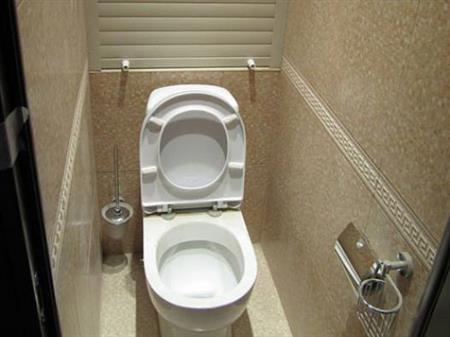 отделка туалета плиткой фото