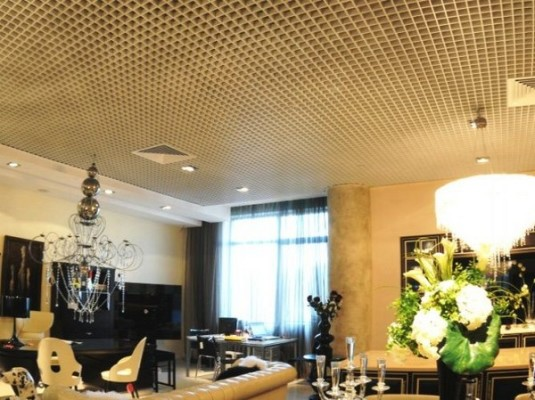 подвесные потолки фото для зала