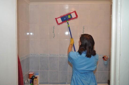 мокрица в ванной