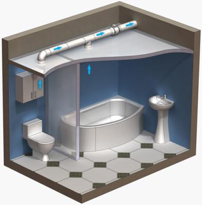 мокрица в ванной как избавиться